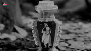 Sunehri Nagin_Preeti Bala in a bottle