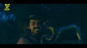 Bobbili Raja-Snake