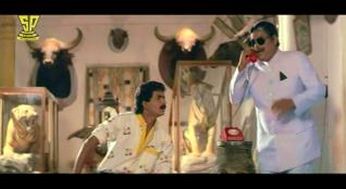 Bobbili Raja-Taxidermy 1