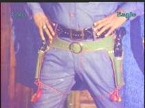 Pistolwali-holster detail