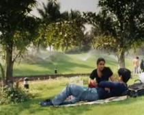 Hyderabad-Blues-picnic