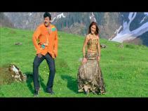 Andarivaadu-more outfits