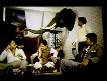 Jwala-taxidermy