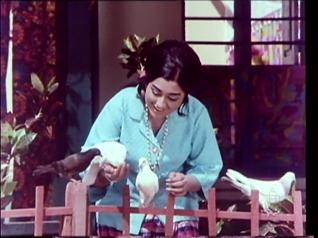 Nagara Haavu