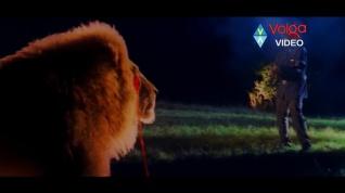 Mruga Raju-lion effects