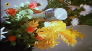 Lady-James-Bond-talk into the flowers