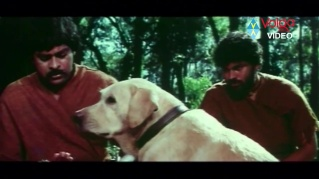 Rakshasudu-island flashback
